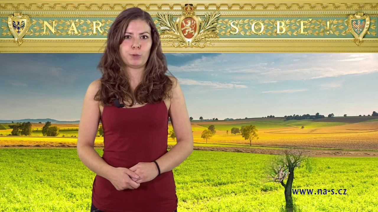 Volební klip politické strany Národ Sobě, volby 2017, NáS, 31