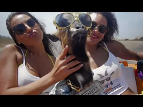 DJ Ichette – La barbichette