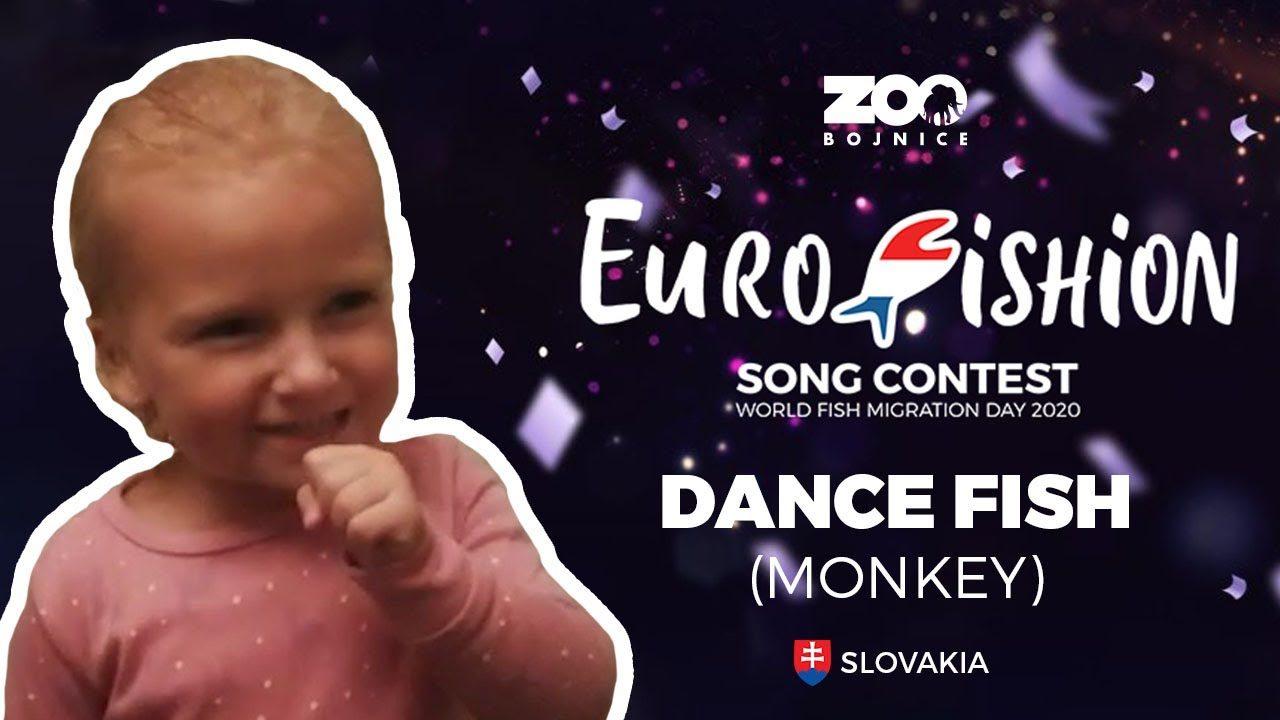 Zoo Bojnice – Dance fish monkey  EUROFISHION 2020